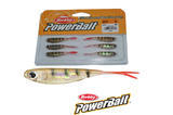 "Smáček Berkley Power Bait Drop Shot Minnow 6ks 2"" (5cm) - Perch"