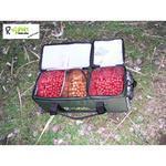 Termo taška na boilies Bait Transporter R-SPEKT 2 V 1