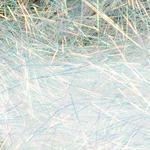Spectra Dubbing SA90 - bílá s bronzovím efektem