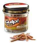 "Žížala Berkley Gulp Mini Earthworm 1"" (2,5cm) - Natural"