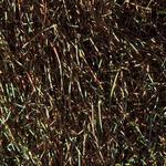 Spectra Dubbing SA46 - paví černo zelená