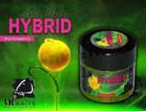 Hybrid Paste LK Baits 150ml - Wild Strawberry