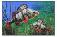 Rohože pro rybáře