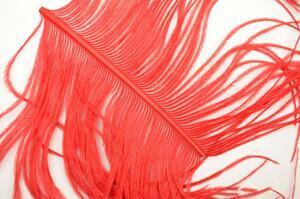 Pštrosí pero PP16 - červená