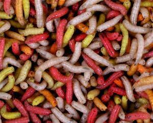 Červi 1L - barevný mix